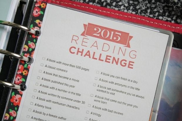 rl challenge 2015